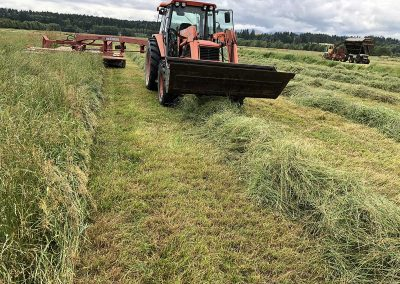 Silage Making on the Meadows